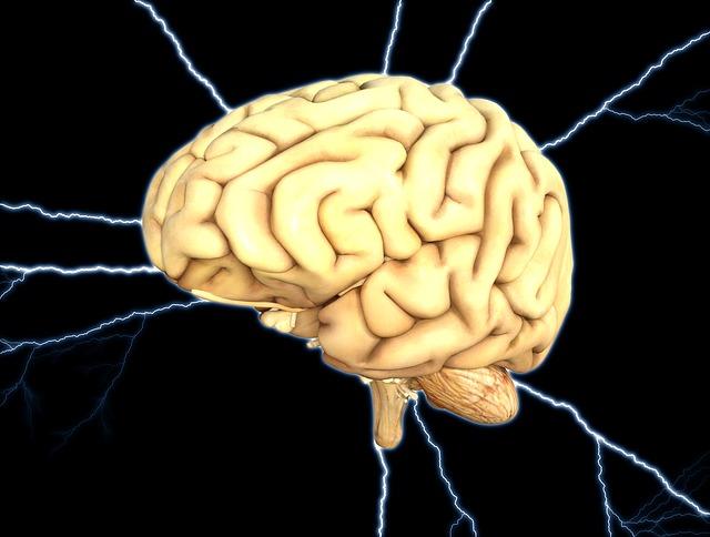 energie mozku