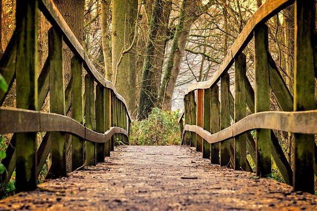 starý dřevěný most